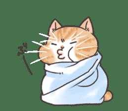 Cat in towel sticker #2996034