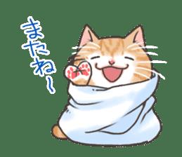 Cat in towel sticker #2996037