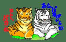 i am higth pride tiger sticker #3009745