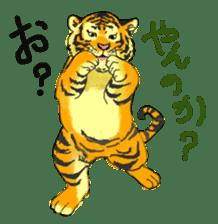 i am higth pride tiger sticker #3009751