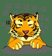 i am higth pride tiger sticker #3009763