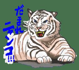 i am higth pride tiger sticker #3009765
