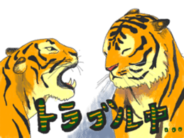 i am higth pride tiger sticker #3009769