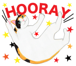 Calico cat's Diary sticker #3012071
