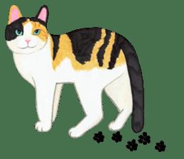 Calico cat's Diary sticker #3012083