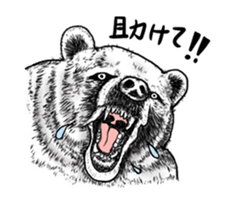 The hikikomori bear sticker #3013643