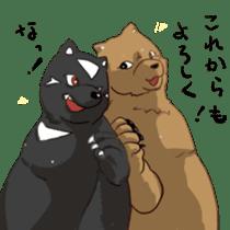 My favarite three bears sticker #3014216