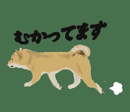 Life with Shiba-Inu sticker #3022844