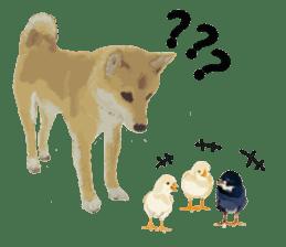 Life with Shiba-Inu sticker #3022845