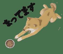 Life with Shiba-Inu sticker #3022847