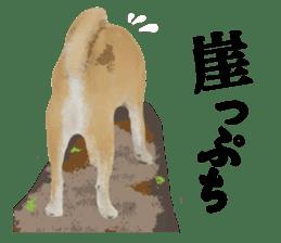 Life with Shiba-Inu sticker #3022853