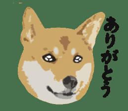 Life with Shiba-Inu sticker #3022858