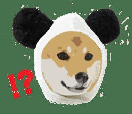 Life with Shiba-Inu sticker #3022863