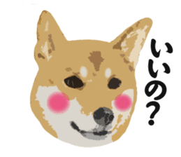 Life with Shiba-Inu sticker #3022874