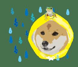 Life with Shiba-Inu sticker #3022877