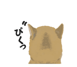 Life with Shiba-Inu sticker #3022881