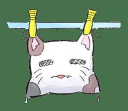 Cushion=cat sticker #3030967