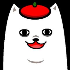 Funny white dog