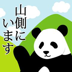 Panda in Kobe