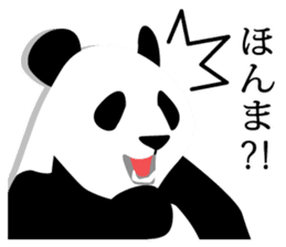 Panda in Kobe sticker #3071269