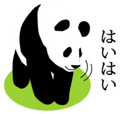 Panda in Kobe sticker #3071287