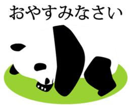 Panda in Kobe sticker #3071297