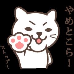 wakayama-ben part4