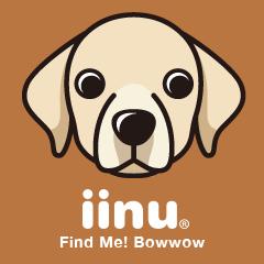 iinu - Labrador Retriever