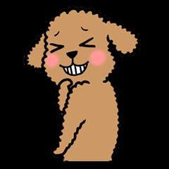 I am Poodle
