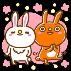 Rabbit couple milk and cocoa