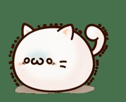 Sticker of a round and pretty cat sticker #3130156
