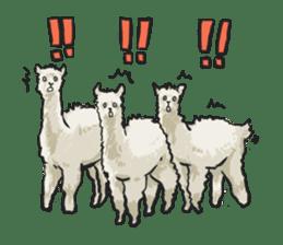 Pacapaca boys sticker #3152361