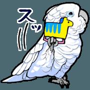 สติ๊กเกอร์ไลน์ Mischievous White parrot 4