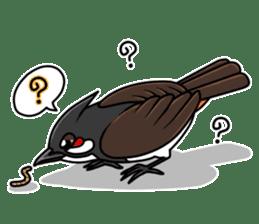 Red-whiskered bulbul bird sticker #3185956