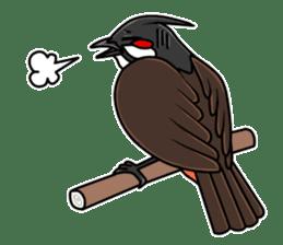Red-whiskered bulbul bird sticker #3185959