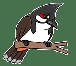 Red-whiskered bulbul bird sticker #3185964