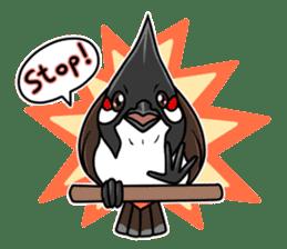 Red-whiskered bulbul bird sticker #3185971