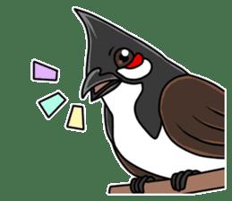 Red-whiskered bulbul bird sticker #3185972