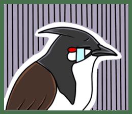 Red-whiskered bulbul bird sticker #3185985