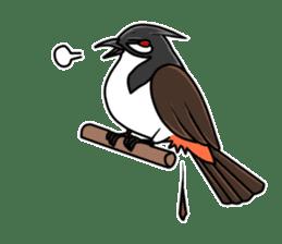 Red-whiskered bulbul bird sticker #3185988