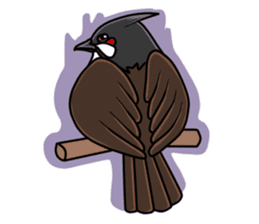 Red-whiskered bulbul bird sticker #3185993