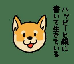 Anz the Japanese shiba dog sticker #3202171