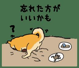 Anz the Japanese shiba dog sticker #3202172