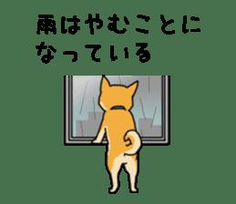Anz the Japanese shiba dog sticker #3202176