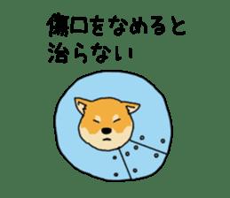 Anz the Japanese shiba dog sticker #3202180