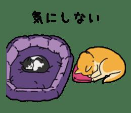 Anz the Japanese shiba dog sticker #3202182