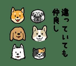 Anz the Japanese shiba dog sticker #3202184
