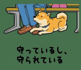 Anz the Japanese shiba dog sticker #3202187