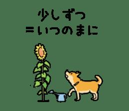 Anz the Japanese shiba dog sticker #3202190