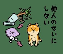 Anz the Japanese shiba dog sticker #3202201